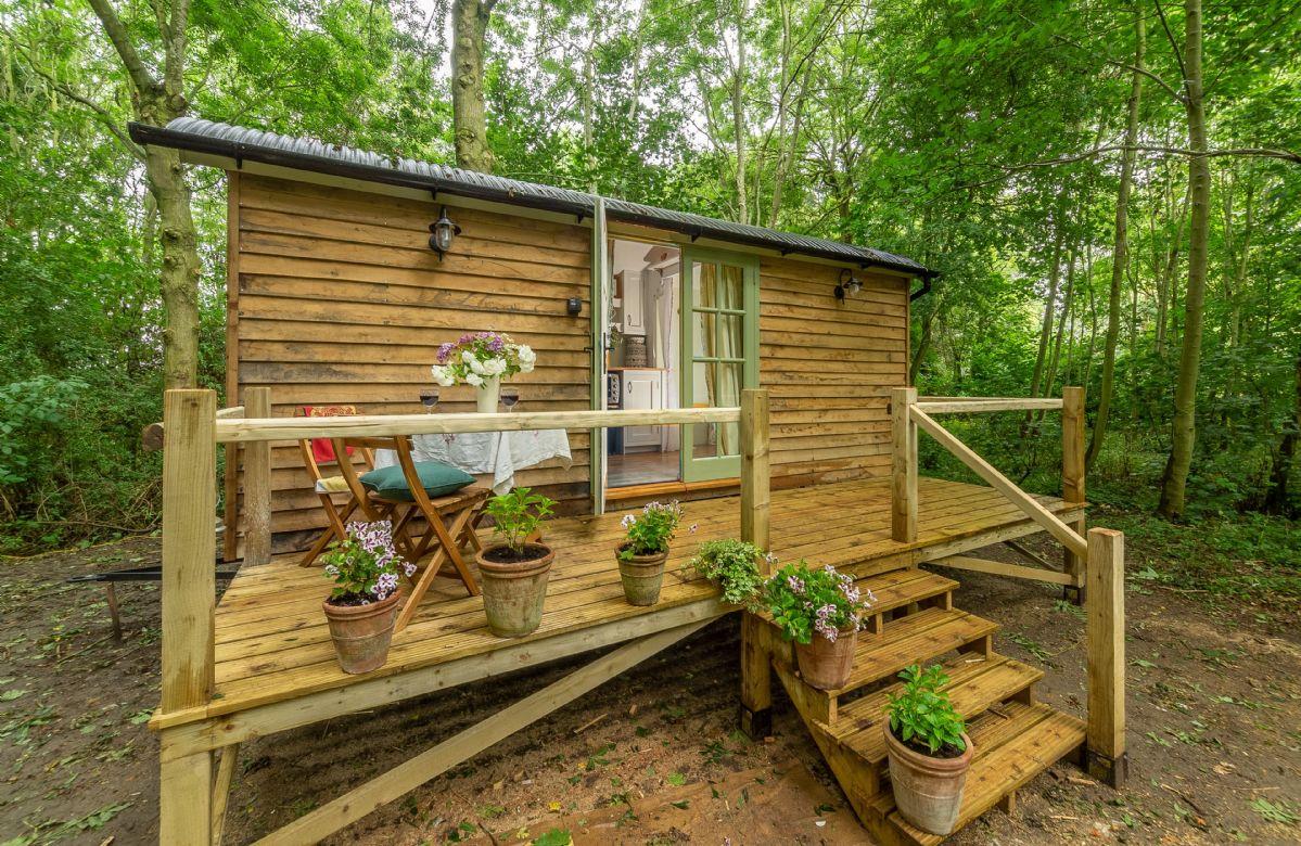 Short Break Holidays - Woodland Retreat Shepherd's Hut