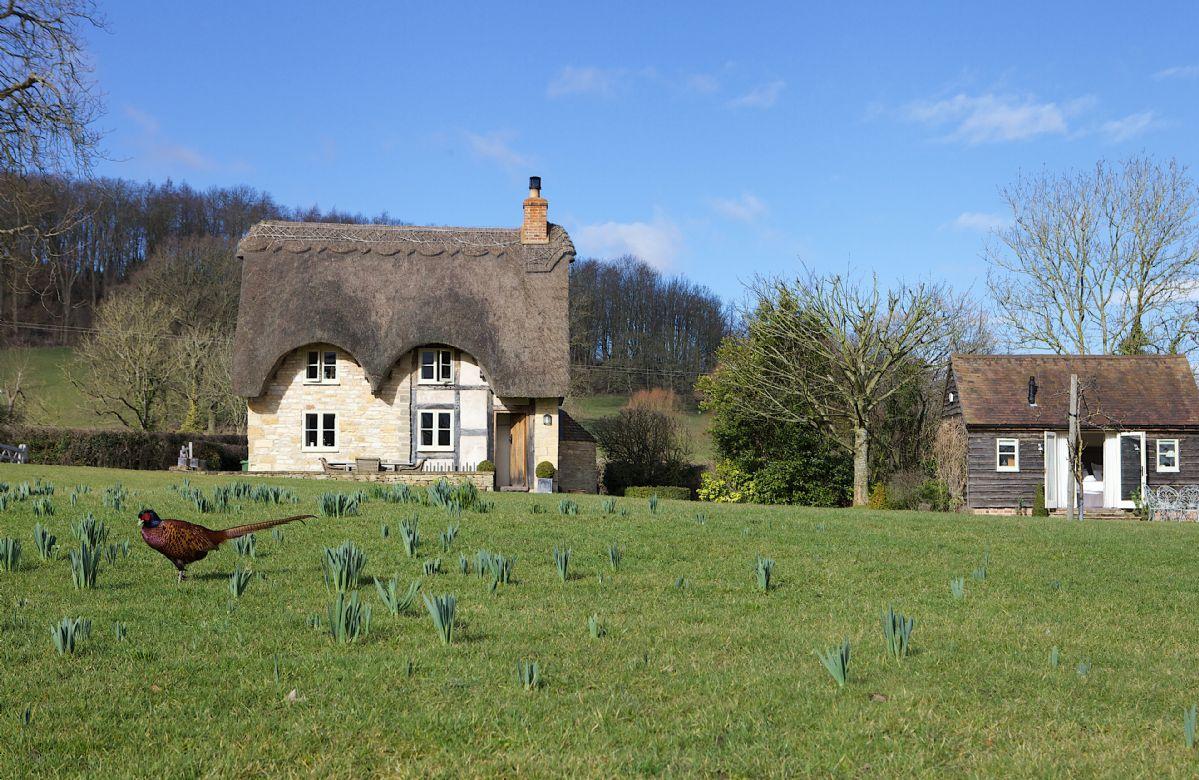 Short Break Holidays - Field Cottage