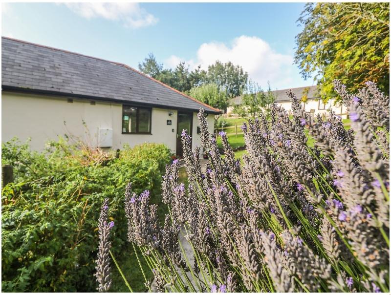 Short Break Holidays - Hazel Cottage